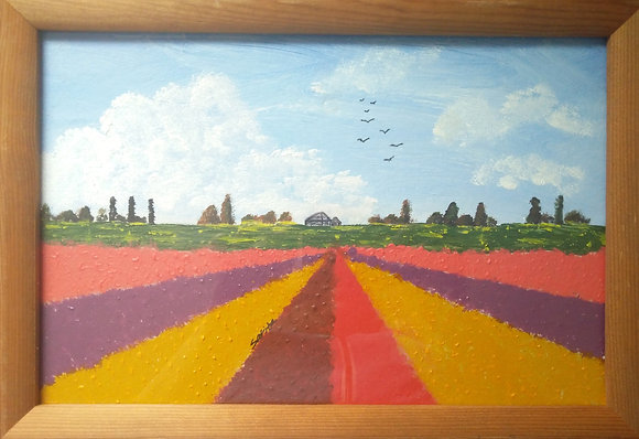The colored fields