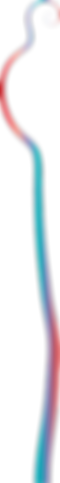 """Чердак ноосферы. Странный аттрактор """"Дерево возможностей"""""""