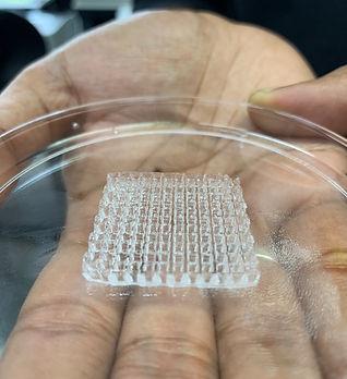 bioprinting1.jpg
