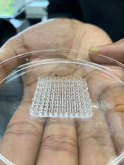 bioprinting1