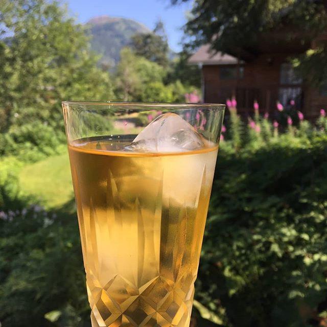 Rooibos Sun Tea