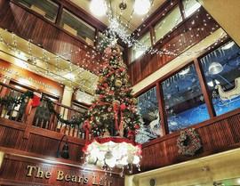 Senate Mall at Christmas