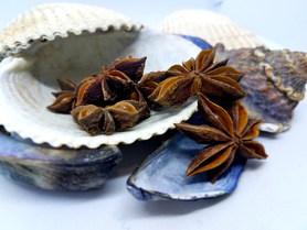 Anise Star Pod at Harbor Tea & Spice