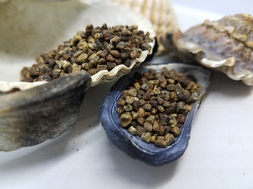 Cardamom Hulled