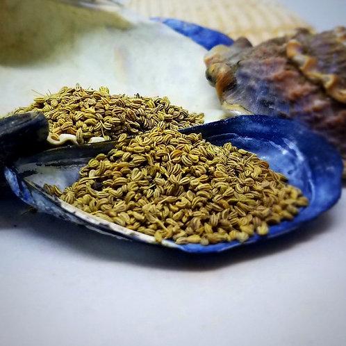 Ajwain Seed Whole