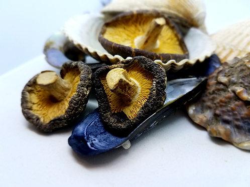 Mushrooms, Shiitake Whole