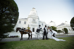 Horse & Carriage at the Trident Castle