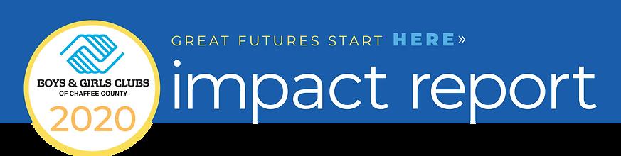 impact_header.png