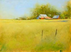 Texas Farmland WEB