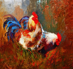 Roosters WEB