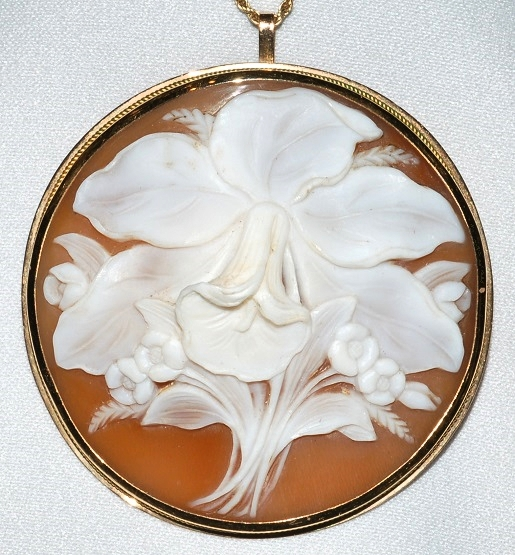 #726 - Shell Cameo Brooch WEB