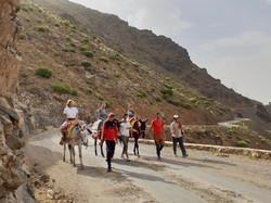 Dar Assarou - Mule Trek (9)