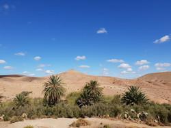Agafay Desert - Nkhila Camp