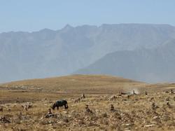Kik Plateau with Toubkal