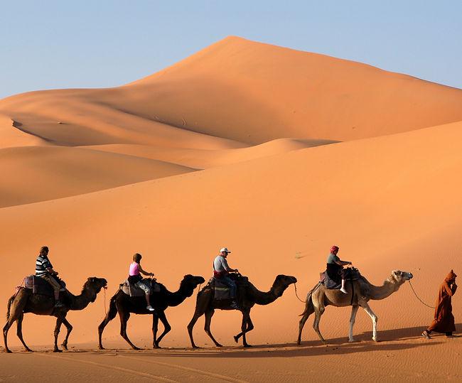 Highlights of Marrakech, Djemma El Fna