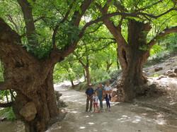 Dar Assarou - Imlil Walk (3)