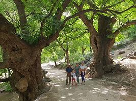 Dar Assarou - Imlil Walk (3).jpg
