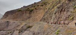 Dar Assarou - Mule Trek (16)