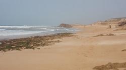 Oualidia - Atlantic Beach
