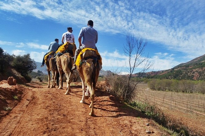 Atlas Camel Trail (8)
