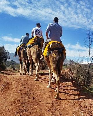 Atlas Camel Trek (8).jpg