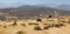 Kik Plateau with Atlas Mountains