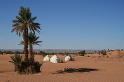 Sahara Safari Camp - Original
