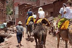 Atlas Camel Trek (9).jpg