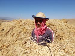 Farmer on Kik Plateau