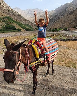 Dar Assarou - Mule Trek (11).jpg