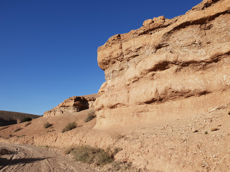 Nkhila Camp Desert Walk (3)
