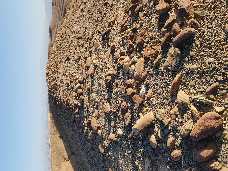 Nkhila Camp Desert Walk (10)