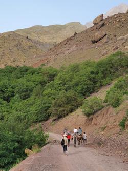 Dar Assarou - Mule Trek (13)