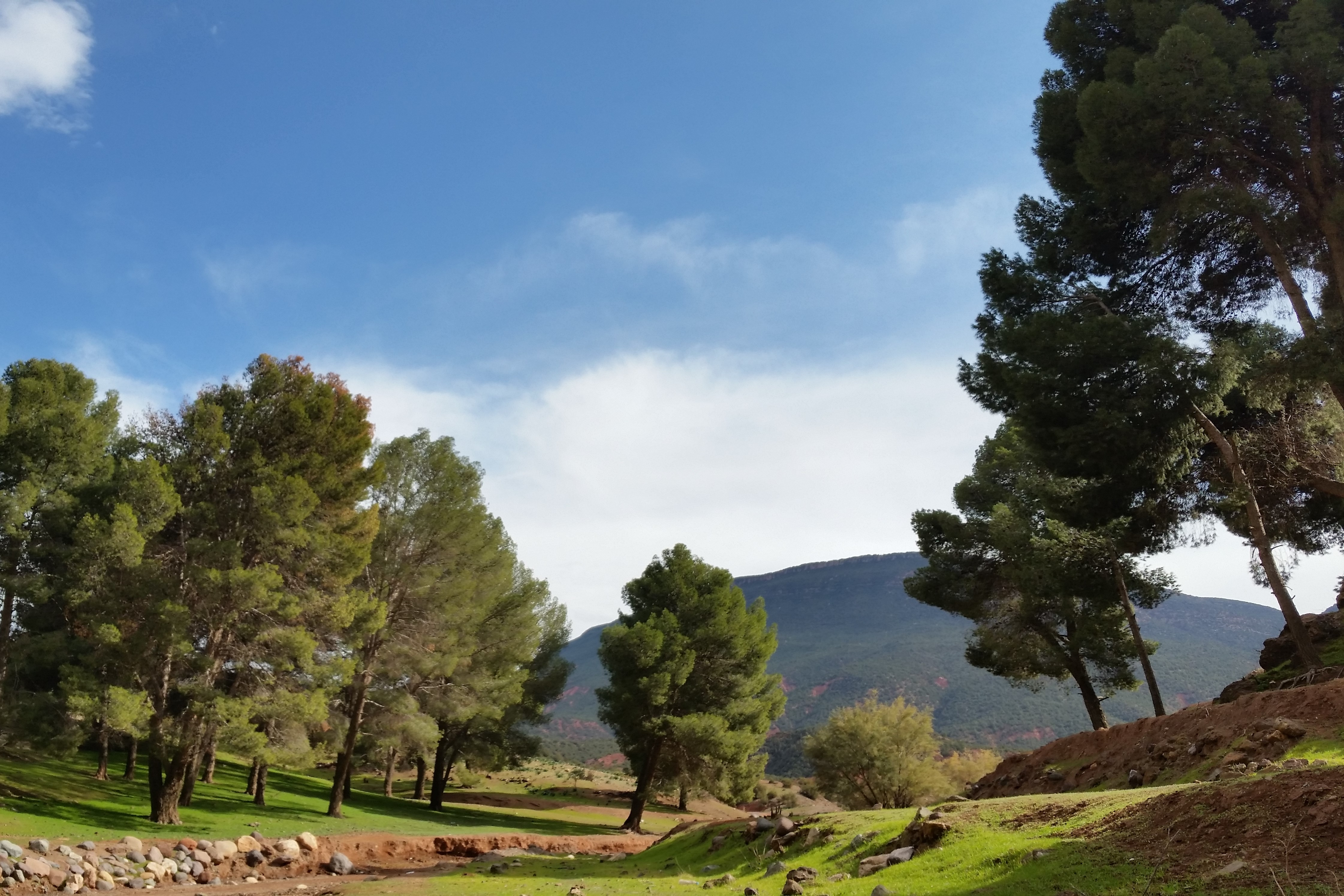 Atlas Camel Trail (7)