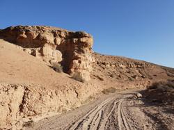 Nkhila Camp Desert Walk (2)
