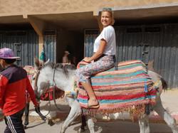 Dar Assarou - Mule Trek (1)
