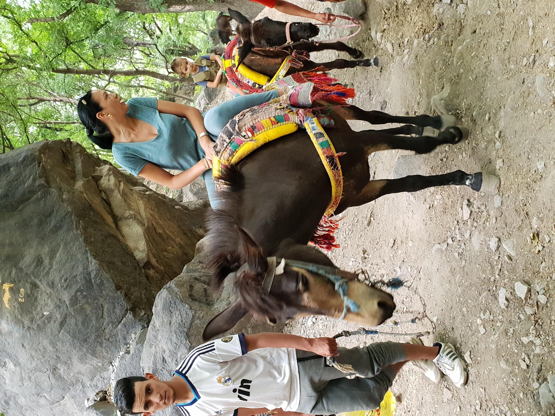 Dar Assarou - Mule Trek (5)