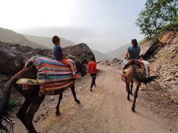 Dar Assarou - Mule Trek (14)