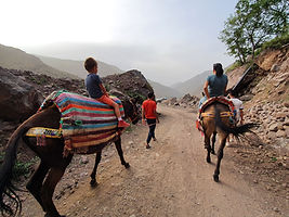 Dar Assarou - Mule Trek (14).jpg