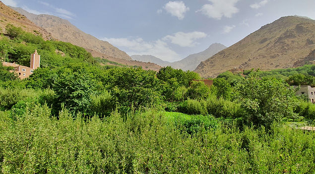 Views from Dar Assarou (2).jpg