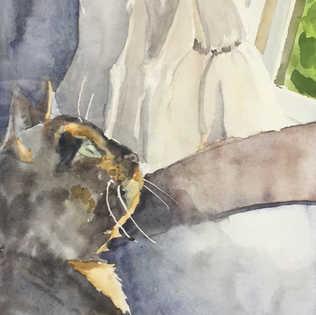 Cat's soliloquy