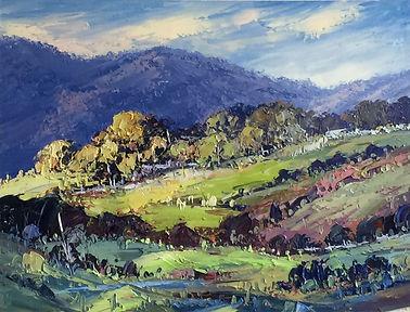 Yarra Valley Morn