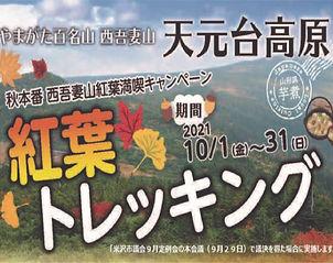 秋登山.jpg