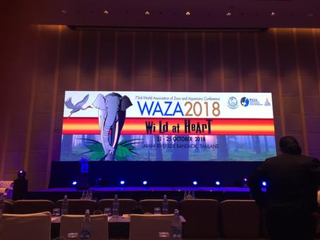 WAZA Conference Round Up