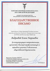 ТПП РФ Комитет по безопасности.jpg
