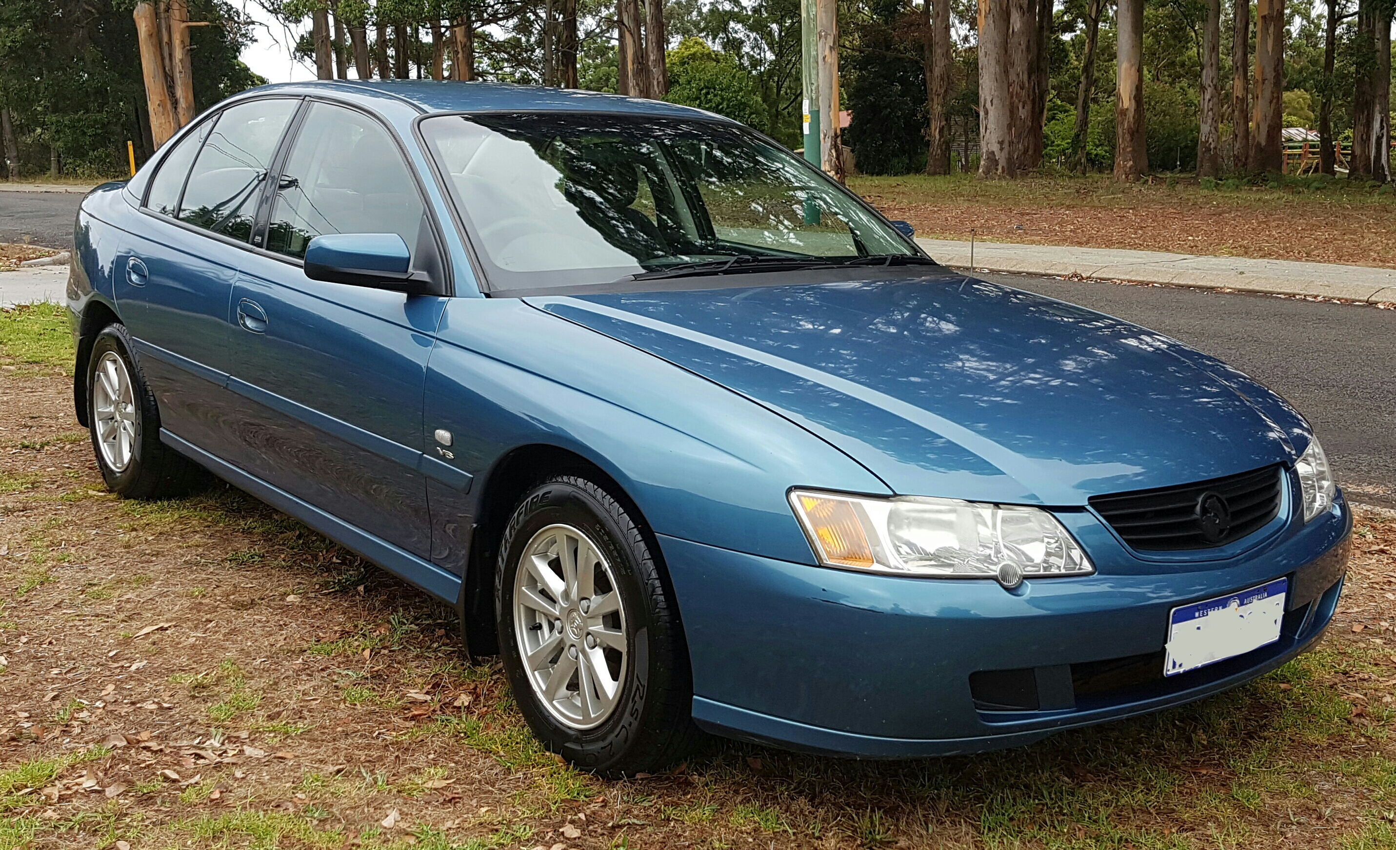 Commodore - Manjimup Car Detailing