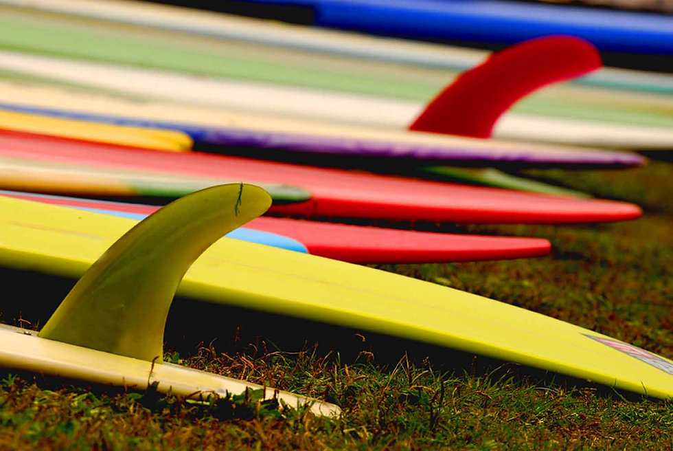 ALQUILER MATERIAL SURF SURFADICTOS.jpg