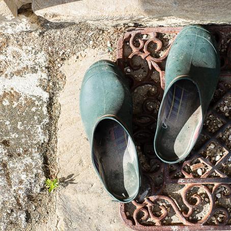 Mon expérience en permaculture : comment débuter un jardin potager