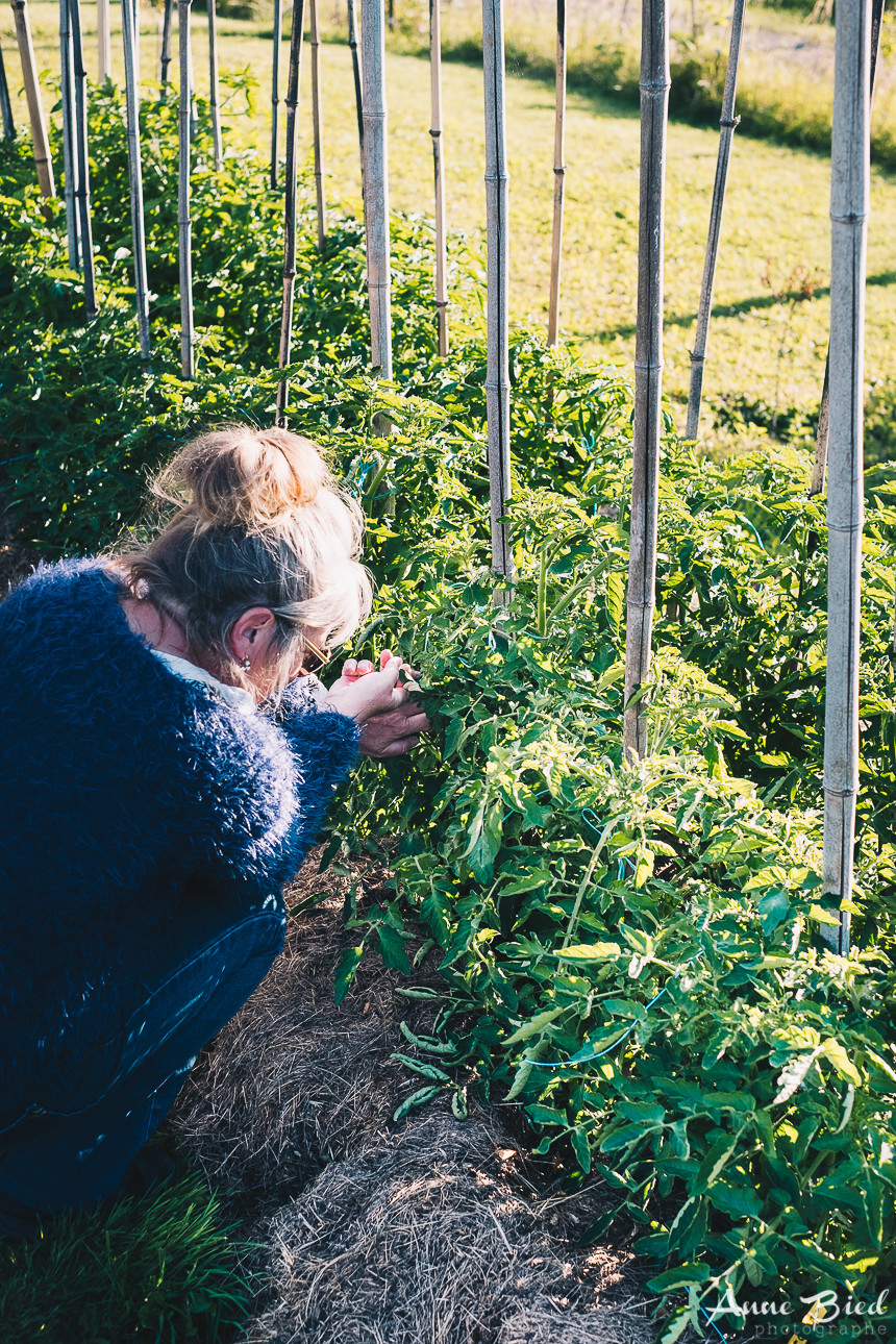 reportage photo permaculture - anne bied - photographe reporter paris - photographe gers - photo reportage france
