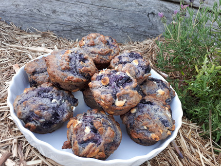 Homemade blueberry & white choc muffins